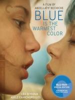 [法] 藍色是最溫暖的顏色 (Blue is the Warmest Color) (2013)[台版]
