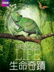 生命奇蹟 (Wonders of Life) [Disc 1/2][台版]