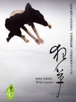 雲門舞集 - 狂草 (Wild Cursive) 現代舞