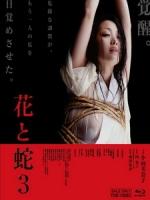 [日] 花與蛇 3 (Flower and Snake 3) (2010)[台版]