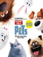 [英] 寵物當家 (The Secret Life of Pets) (2016)[台版]