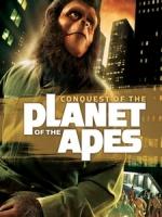 [英] 浩劫餘生 4 (Conquest of the Planet of the Apes) (1972)[台版]