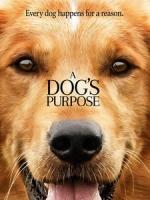 [英] 為了與你相遇 (A Dog s Purpose) (2017)[台版]