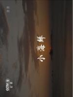 CCTV9 小海鮮