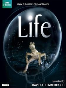 生命脈動 (Life) [Disc 2/4][台版]