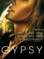 [英] 越界 第一季 (Gypsy S01) (2017)[台版字幕]