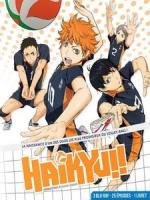 [日] 排球少年!! 第一季 (Haikyuu S01) (2014)[台版字幕]