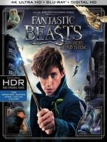 [英] 怪獸與牠們的產地 (Fantastic Beasts and Where to Find Them) (2016)[台版]