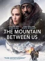 [英] 絕處逢山 (The Mountain Between Us) (2017)[台版]