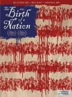 [英] 國家的誕生 (The Birth of a Nation) (2016)