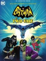[英] 蝙蝠俠VS雙面人 (Batman Vs Two Face) (2017)[台版字幕]