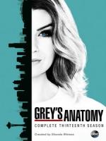 [英] 實習醫生 第十三季 (Grey s Anatomy S13) (2016) [Disc 1/2]