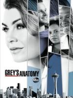 [英] 實習醫生 第十四季 (Grey s Anatomy S14) (2017) [Disc 3/3]