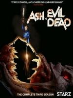 [英] 鬼玩人 第三季 (Ash vs Evil Dead S03) (2018) [Disc 1/2]