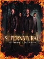 [英] 超自然檔案 第12季 (Supernatural S12) (2016) [Disc 2/3]