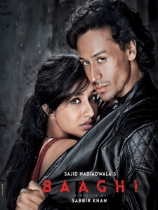 [印] 為愛叛逆 (Baaghi - A Rebel For Love) (2016)[台版字幕]