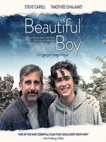 [英] 美麗男孩 (Beautiful Boy) (2018)[台版字幕]