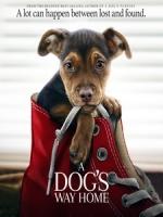 [英] 為了與你相聚 (A Dog s Way Home) (2019)[台版字幕]